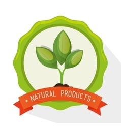 Symbol natural product plant label vector
