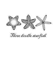 Three doodle textured starfish vector image vector image