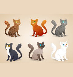 Set of cute cartoon cats with different colored vector