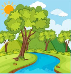 forest scene with trees and river vector image