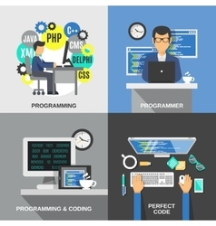 Programmer Flat Set vector image vector image