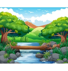 Scene with river through the forest vector image