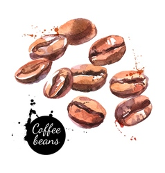 Watercolor hand drawn coffee beans isolated vector