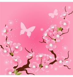 Card with stylized cherry blossom flowers vector image