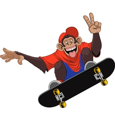 Funny monkey skateboarder vector