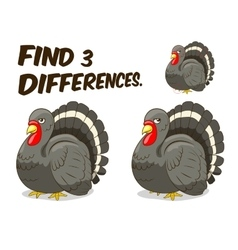 Find differences game turkey vector image