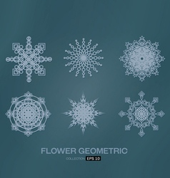 Flower geometric vector
