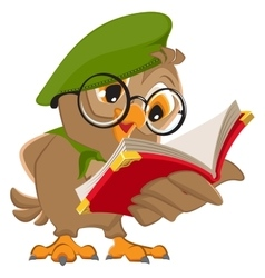 Owl reading book scout vector