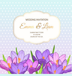 Violet purple crocus flowers wedding invitation vector