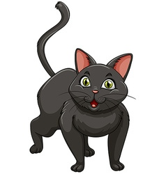 Black cat standing alone vector