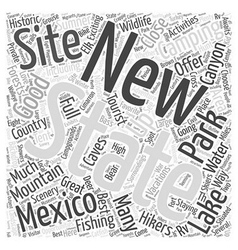 New mexico camping word cloud concept vector