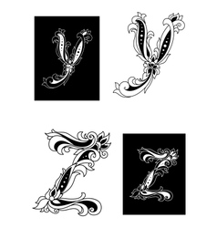 Y and Z letters in retro floral style vector image