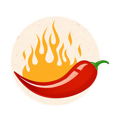 Chili peppers in fire vector