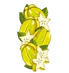 Star fruit isolated composition vector