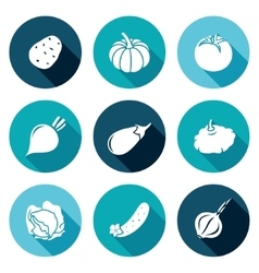 Vegetables set of nine icons set vector