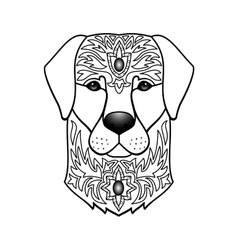 Ornamental white dog vector