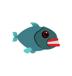 Piranha isolated see predatory fish on white vector