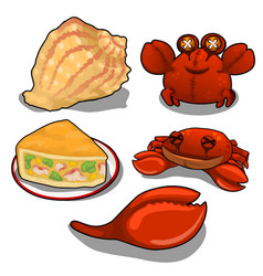 set of crab cake and sea shells isolated vector image vector image