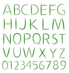 Simple Font Type vector image vector image