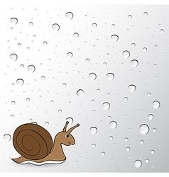 Snail on water drops background vector