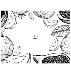 Hand drawn frame of fresh fig and guava vector