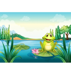 A happy frog above a water lily vector