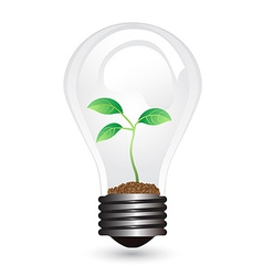 Light bulb plant vector