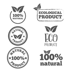 Logo badge label logotype elements with leafs vector