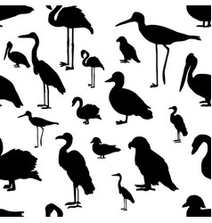 Seamless pattern various kinds of birds vector