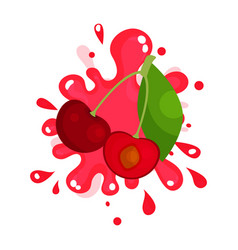 Ripe cherries juice splashing colorful fresh vector