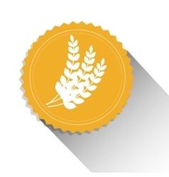 wheat organic product beer shadow vector image