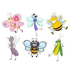 Flying insects vector image vector image