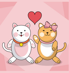 loving couple cats animal baby heart decoration vector image