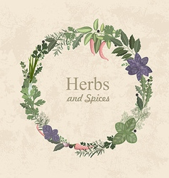 Vintage label of herbs and spices for your design vector