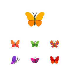 Flat monarch set of archippus butterfly milkweed vector