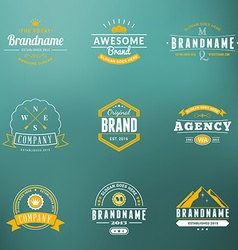 Set of hipster vintage labels logotypes badges vector