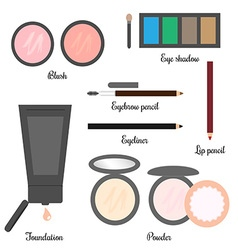 Cosmetics set for a make-up 2 vector image