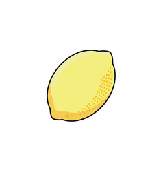 Flat sketch style yellow fresh ripe limon vector