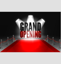Grand opening event banner vector