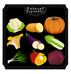 These vegetables vector