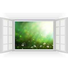 Open window of daisies in a meadow vector