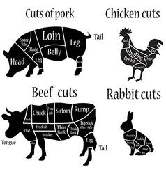 Butcher chart diagramm vector image vector image