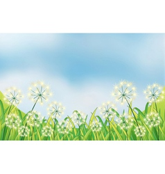 The growing weeds under the blue sky vector image vector image