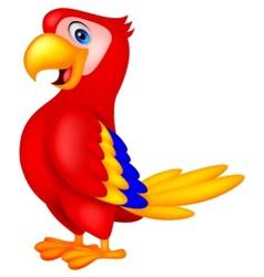 Cute parrot bird cartoon vector image