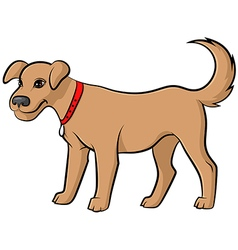 Dog pale vector