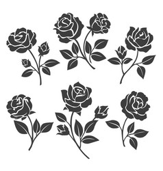 Rose silhouettes decorative set vector