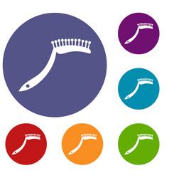 Pet comb icons set vector