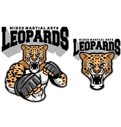 MMA fighter leopard vector image