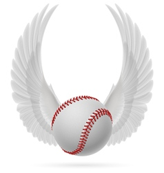 Flying baseball vector image