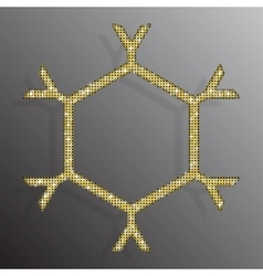 Frame gold sequins snowflake glitter sparkle vector